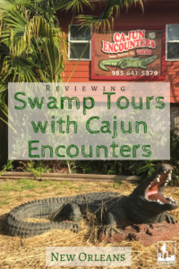 Swamp Tours with Cajun Encounters