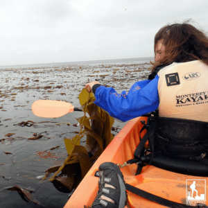 Kayak health benefits
