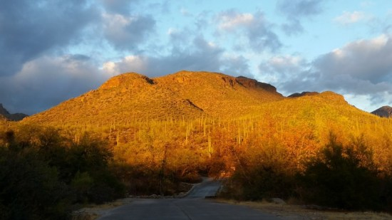 hikes in Tucson