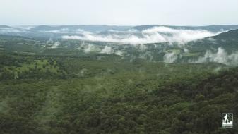 Grand canyon arkansas