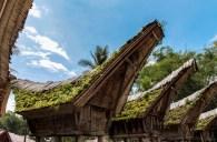 Tanah Toraja-1-2