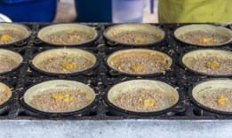 Don't kno the name but tasted great.