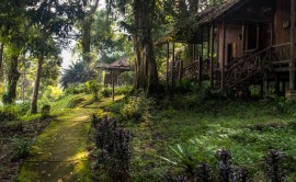 An enchnted place and spooky at night.