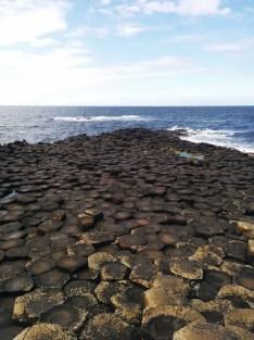 Escarolota - 02 Giant's Causeway 2016 (7)