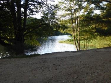 Light on Virginia Water Lake