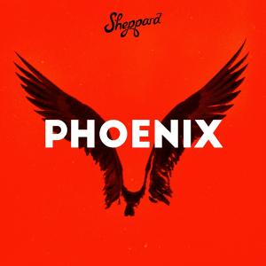 Sheppard - Phoenix (Australia NF, Australia Decides 2019)