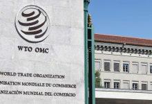 Photo of Candidaturas para dirigir la OMC comenzarán a recibirse el 8 de junio