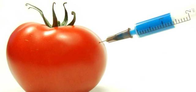 What is GMO? Engineering, Difference, Debate, Pros/Cons