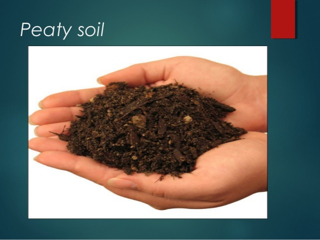Pros And Cons Of Fossil Fuels >> Peaty Soil - Eschool