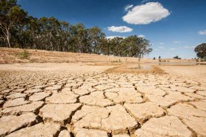 Effects of drought in our lives
