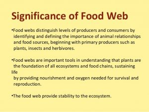 Significance and facts of food chain: