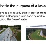 What is a Levee