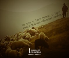 Despertar o Amor Pastoral para Discipular como o Bom Pastor