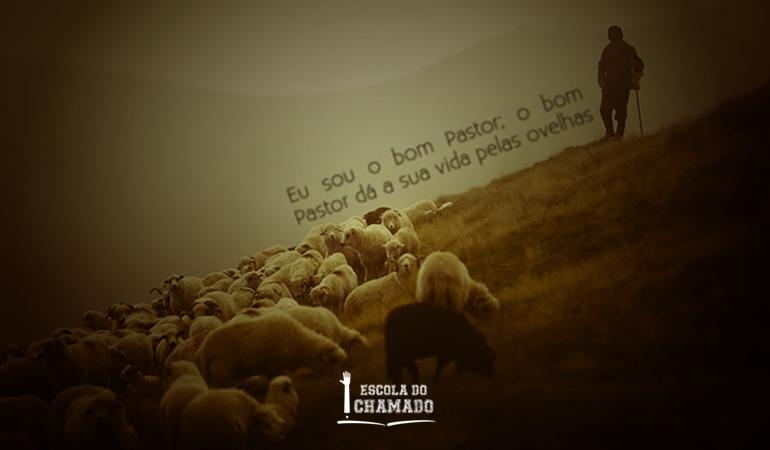 Amor Pastoral, Discipular, Bom Pastor