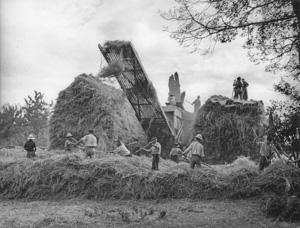 Dépiquage au Mousse, Gers 1946. © Jean Dieuzaide.jpg