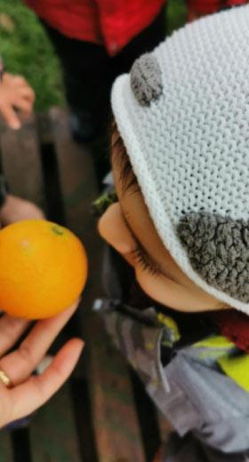 jardim-laranja-ar-livre-creche-pré-escolar-Aveiro