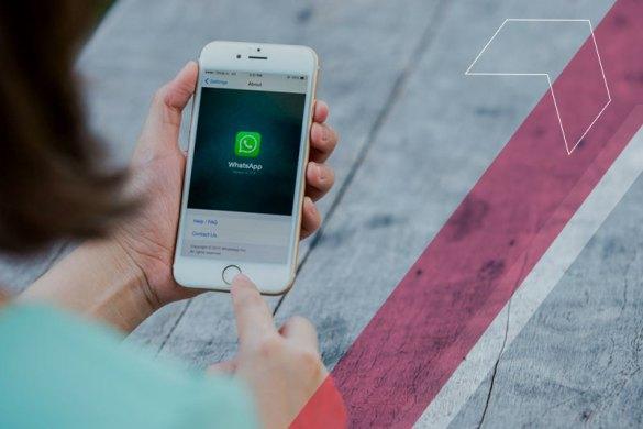 whatsapp comunicação escola