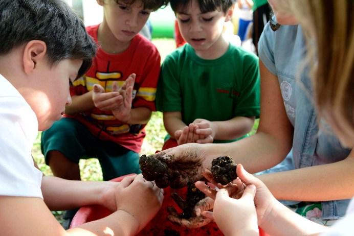 Escola Terra Firme – Projeto Sementes pelo Mundo