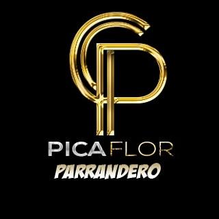 Picaflor Parrandero