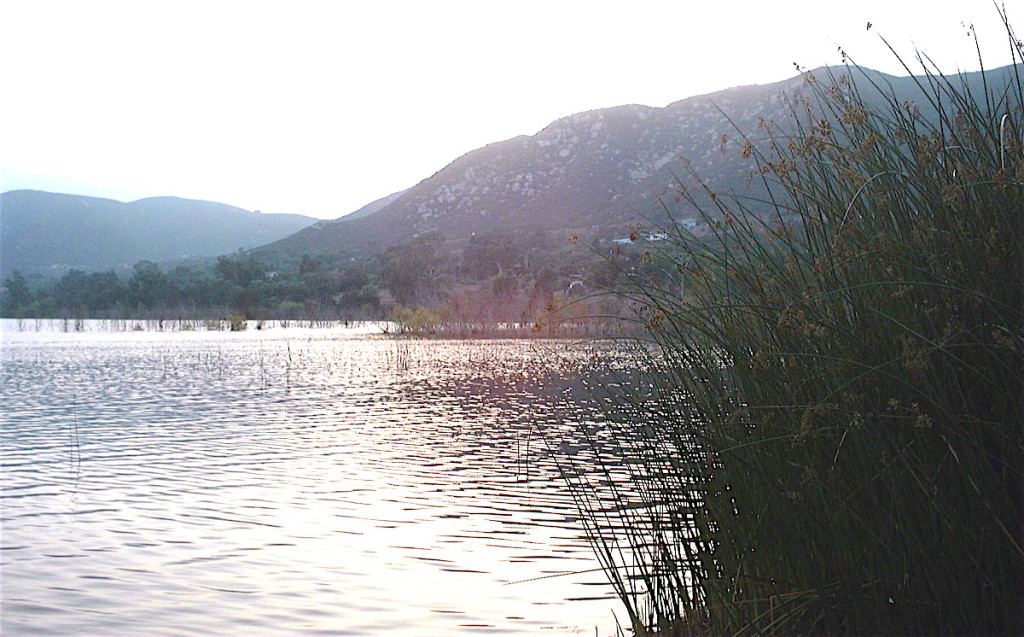 Lake Hodges, Del Dios. (Photo: Dan Weisman)
