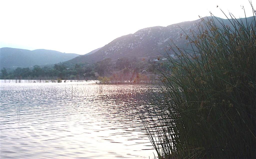 Lake Hodges, Del Dios. (Photo: Dan Weisman)