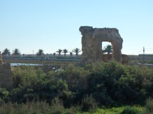 Ruinas e a natureza