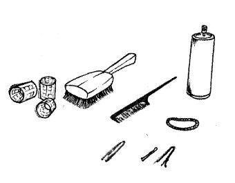 Elementos Recogidos Peinados