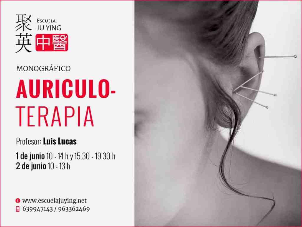 Curso de auriculoterapia en junio de 2019. Por Luis Lucas