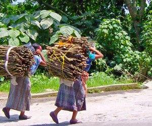 Women carrying wood