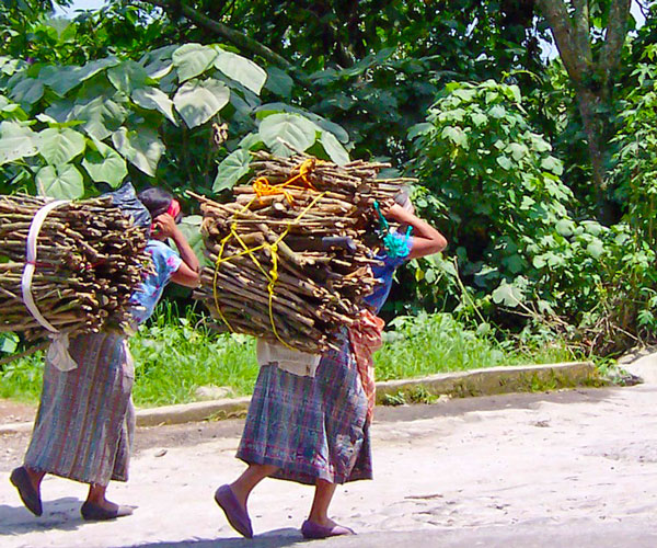 Women carrying wood