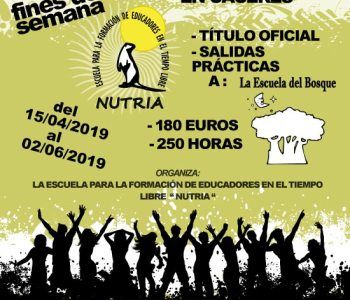 cartel curso monitores