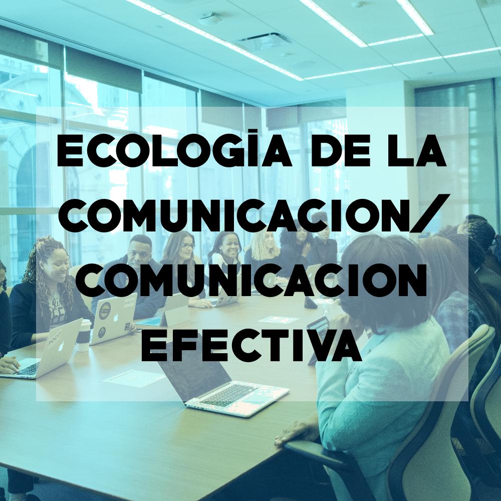 Comunicación Efectiva - Consultoria empresarial - Todo Es Uno