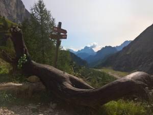 Panorama dal Rifugio Faller verso il fondo valle