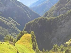 Panorama dal Col Del Mus