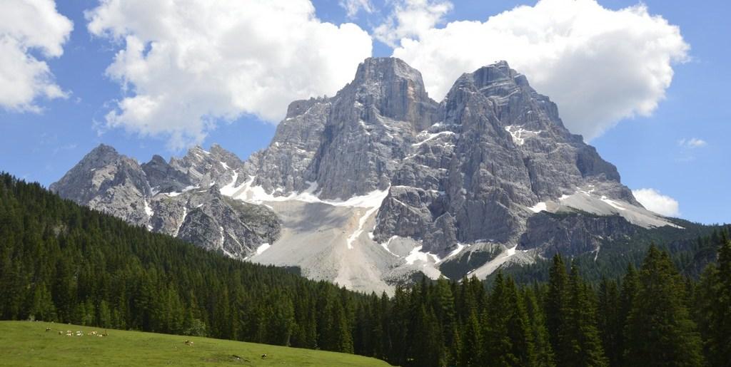 Monte Crot con l' Alpinia