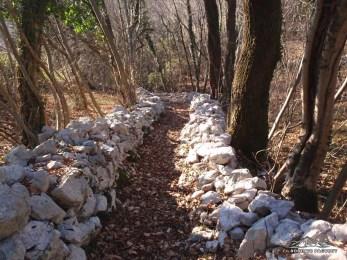 Sentiero in salita