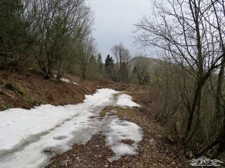 Neve residua lungo la carrareccia