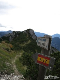 uscita dal sentiero Pale d'Arint