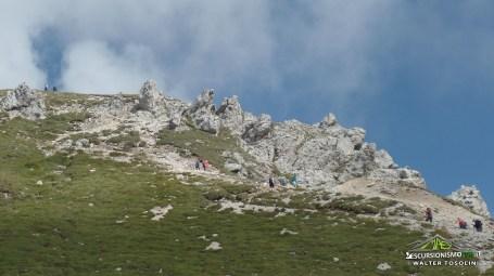 Gartnerkofel in vista della cima