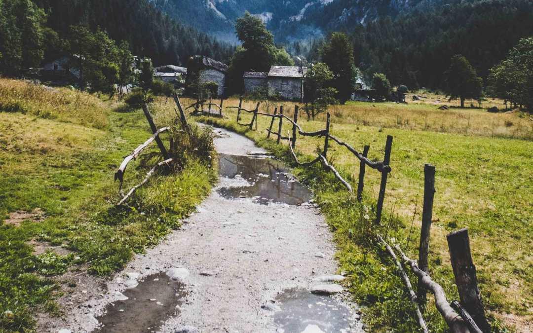 Il sentiero della semplicità porta ai formaggi di montagna