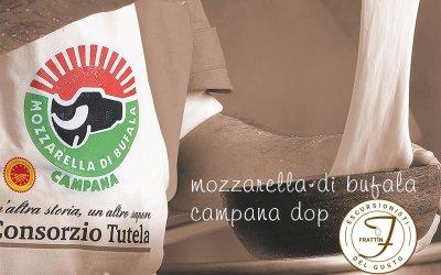 Non è una bufala, la Mozzarella di Bufala Campana Dop è davvero buona e fa bene