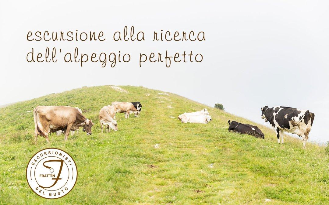 Escursione tra i migliori formaggi di alpeggio in Trentino Alto Adige