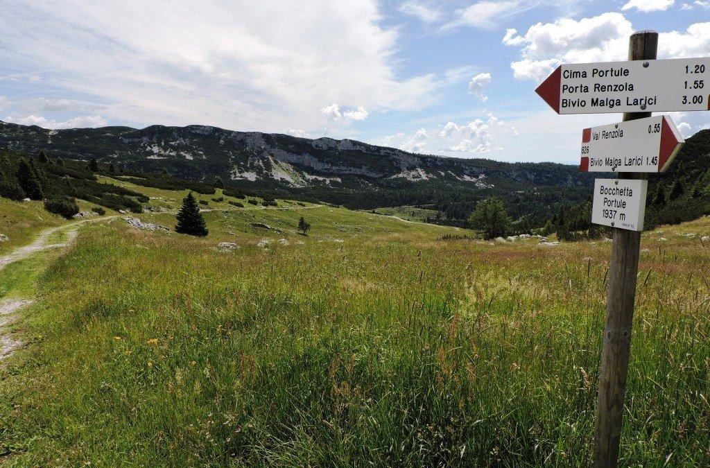Cima Portule: il nostro formaggio di montagna