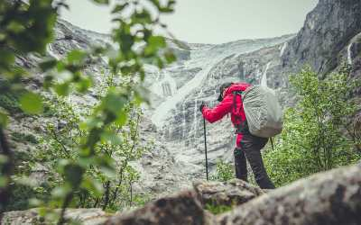 Quali sono i formaggi di alta montagna: guida alle eccellenze d'alta quota