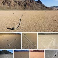 7 increíbles anomalías de la Naturaleza. Con fotos.