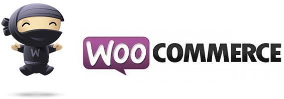 WooCommerce 2.0 o el desastre de la actualización