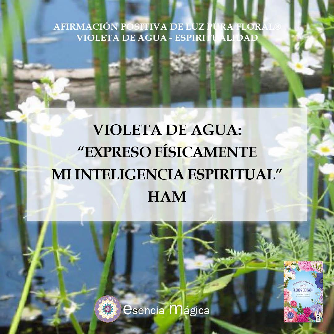 Afirmación positiva de Luz Pura Floral Violeta de Agua-Espiritualidad