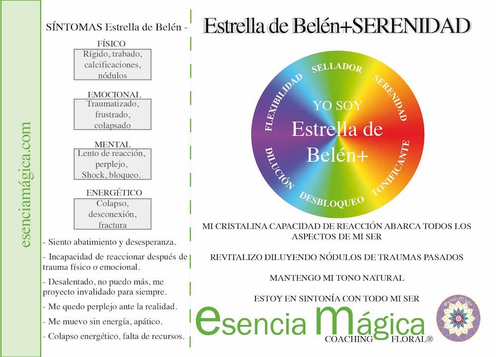 TARJETA COACHING FLORAL ESTRELLA DE BELÉN
