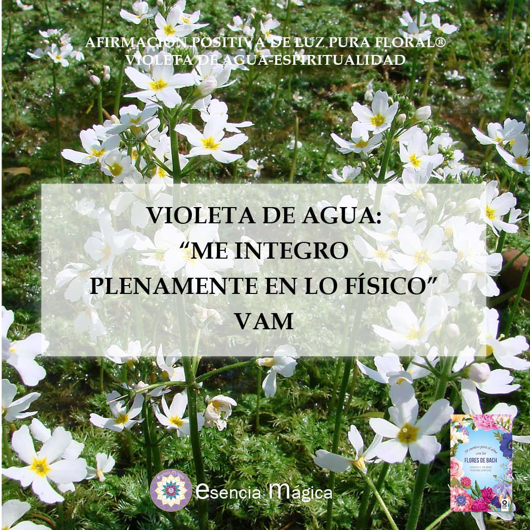 Afirmación positiva de Luz Pura Floral- Violeta de Agua-Espiritualidad