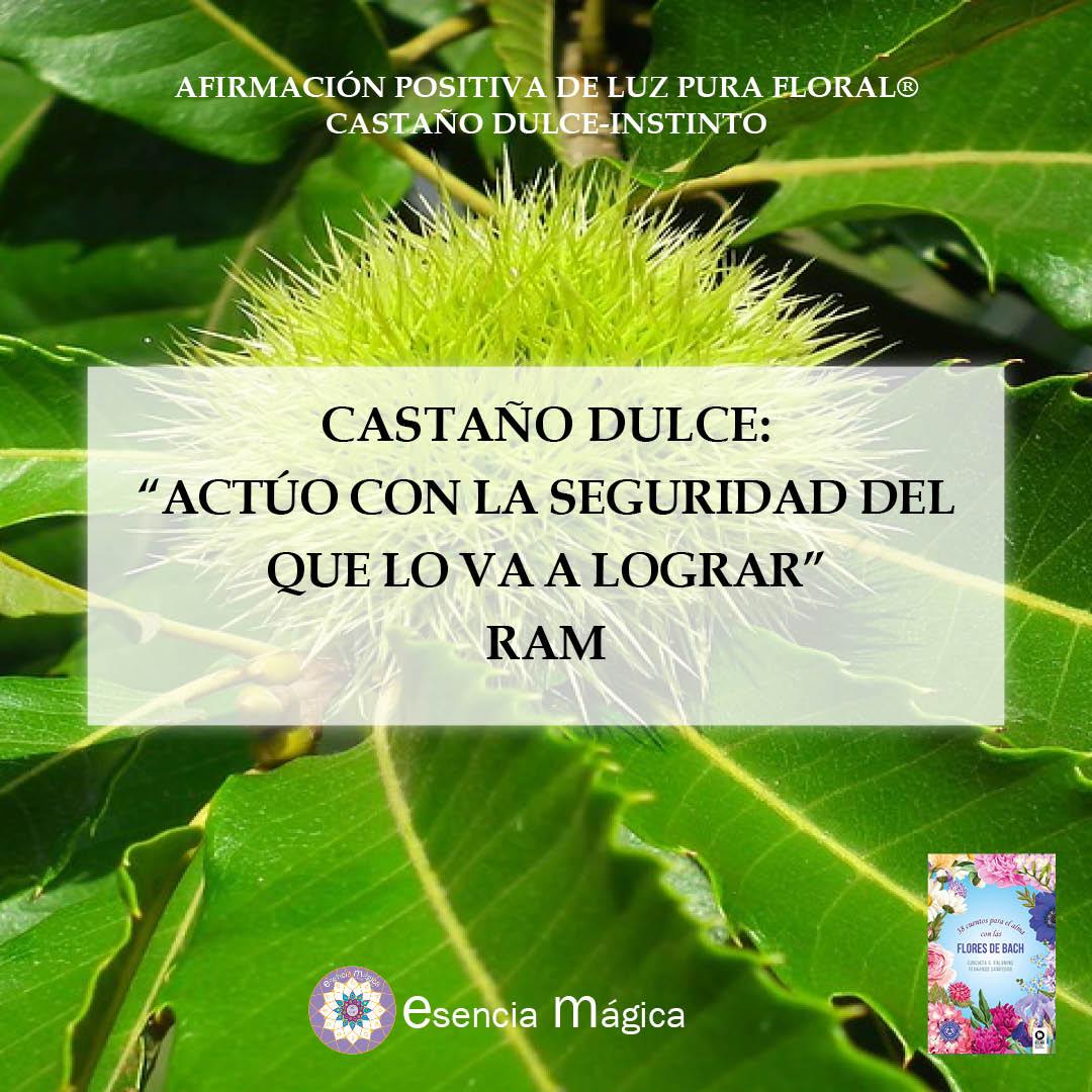 Afirmación del día de Luz Pura Floral Castaño Dulce-Instinto